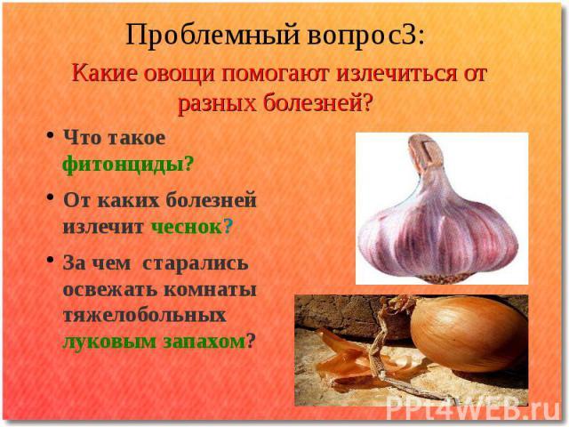 Проблемный вопрос3: Какие овощи помогают излечиться от разных болезней?Что такое фитонциды? От каких болезней излечит чеснок? За чем старались освежать комнаты тяжелобольных луковым запахом?