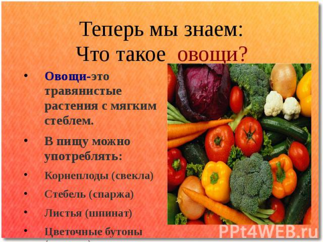 Теперь мы знаем: Что такое овощи?Овощи-это травянистые растения с мягким стеблем. В пищу можно употреблять: Корнеплоды (свекла) Стебель (спаржа) Листья (шпинат) Цветочные бутоны (капуста)