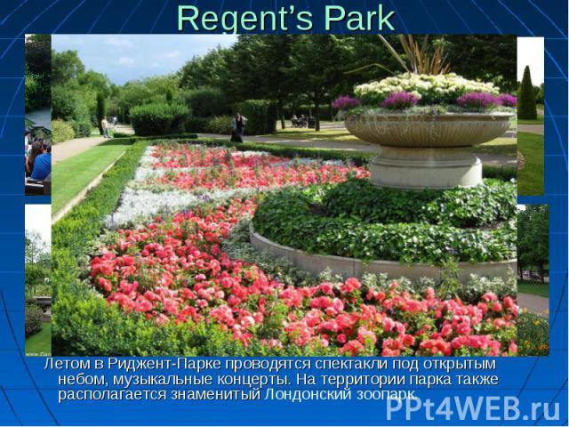 Regent's Park Летом вРиджент-Парке проводятся спектакли под открытым небом, музыкальные концерты. Натерритории парка также располагается знаменитыйЛондонский зоопарк.