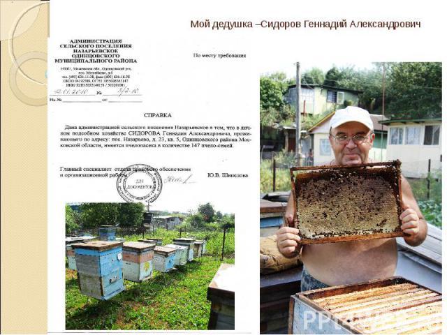 Мой дедушка –Сидоров Геннадий Александрович