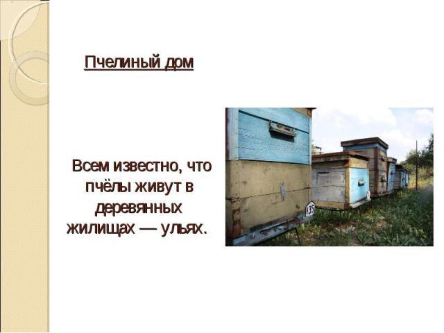 Пчелиный дом Всем известно, что пчёлы живут в деревянных жилищах — ульях.