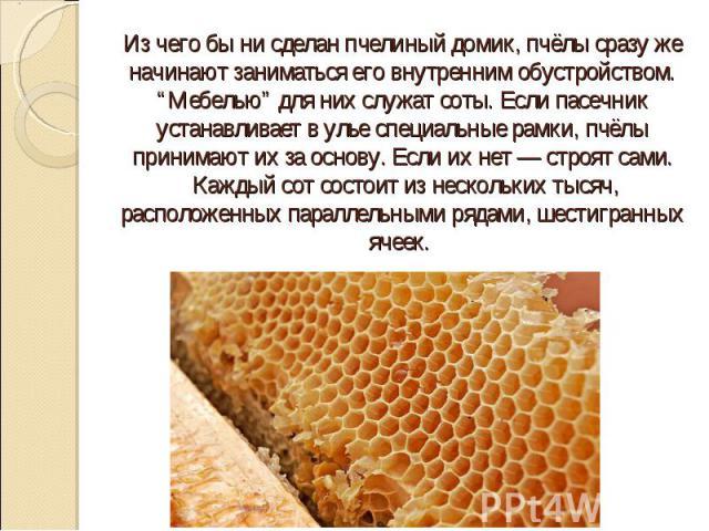 """Из чего бы ни сделан пчелиный домик, пчёлы сразу же начинают заниматься его внутренним обустройством. """"Мебелью"""" для них служат соты. Если пасечник устанавливает в улье специальные рамки, пчёлы принимают их за основу. Если их нет — строят сами. Кажды…"""