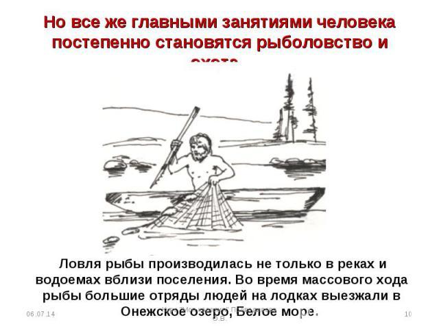 Но все же главными занятиями человека постепенно становятся рыболовство и охота. Ловля рыбы производилась не только в реках и водоемах вблизи поселения. Во время массового хода рыбы большие отряды людей на лодках выезжали в Онежское озеро, Белое море.