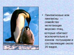 Пингви новые или пингви ны — семейство нелетающих морских птиц, которые обитают