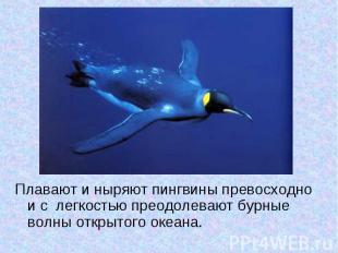 Плавают и ныряют пингвины превосходно и с легкостью преодолевают бурные волны от