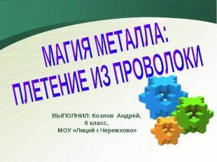 Магия металла: Плетение из проволоки ВЫПОЛНИЛ: Козлов Андрей, 6 класс, МОУ «Лице