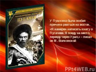 У Пушкина была особая причина рваться на восток. «Я намерен написать книгу о Пуг
