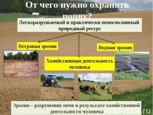 От чего нужно охранять почву? Легкоразрушаемый и практически невосполнимый приро