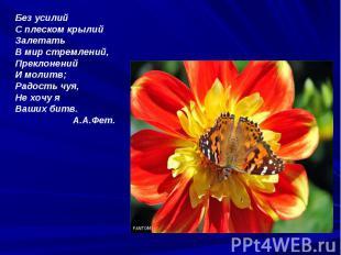 Без усилий С плеском крылий Залетать В мир стремлений, Преклонений И молитв; Рад