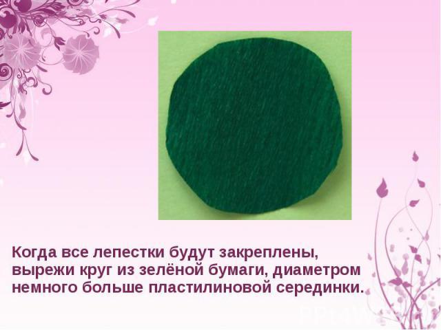 Когда все лепестки будут закреплены, вырежи круг иззелёной бумаги, диаметром немного больше пластилиновой серединки.