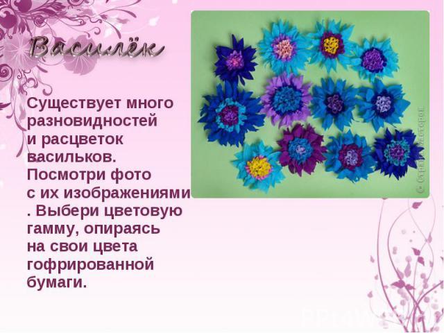 Василёк Существует много разновидностей ирасцветок васильков. Посмотри фото сихизображениями. Выбери цветовую гамму, опираясь насвои цвета гофрированной бумаги.
