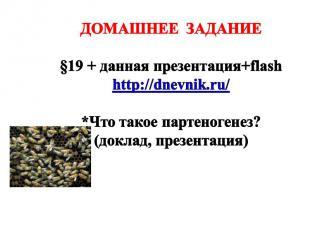 ДОМАШНЕЕ ЗАДАНИЕ §19 + данная презентация+flash http://dnevnik.ru/ *Что такое па
