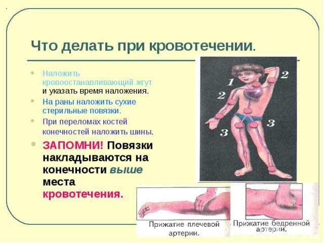 Что делать при кровотечении. Наложить кровоостанавливающий жгут и указать время наложения. На раны наложить сухие стерильные повязки. При переломах костей конечностей наложить шины. ЗАПОМНИ! Повязки накладываются на конечности выше места кровотечения.