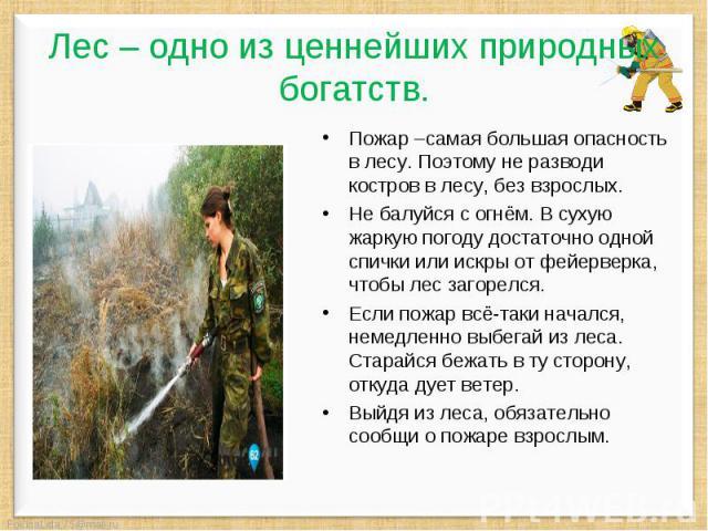 Лес – одно из ценнейших природных богатств. Пожар –самая большая опасность в лесу. Поэтому не разводи костров в лесу, без взрослых. Не балуйся с огнём. В сухую жаркую погоду достаточно одной спички или искры от фейерверка, чтобы лес загорелся. Если …