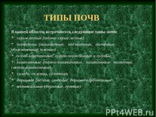 Типы почв В нашей области встречаются следующие типы почв: * серые лесные (темно