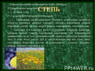 Степных растений насчитывается более 200 видов. В Правобережье выделяют 2 подзон