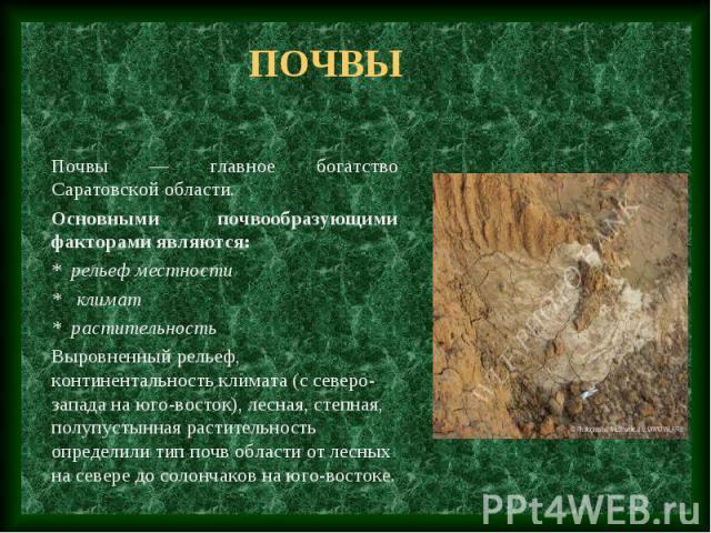 Почвы Почвы — главное богатство Саратовской области. Основными почвообразующими факторами являются: * рельеф местности * климат * растительность Выровненный рельеф, континентальность климата (с северо-запада на юго-восток), лесная, степная, полупуст…