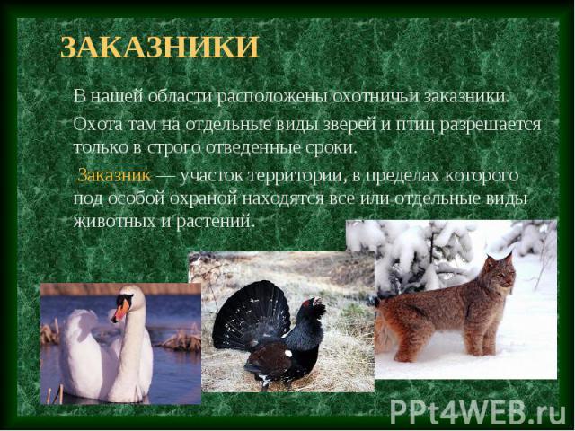 заказники В нашей области расположены охотничьи заказники. Охота там на отдельные виды зверей и птиц разрешается только в строго отведенные сроки. Заказник — участок территории, в пределах которого под особой охраной находятся все или отдельные виды…