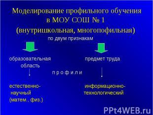 Моделирование профильного обучения в МОУ СОШ № 1 (внутришкольная, многопофильная
