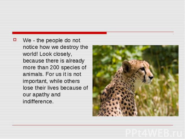 We - the people do not notice how we destroy the world! Look closely, because there is already more than 200 species of animals. For us it is not important, while others lose their lives because of our apathy and indifference.