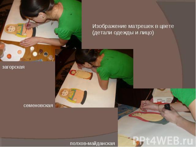 Изображение матрешек в цвете (детали одежды и лицо) загорская семеновская полхов-майданская
