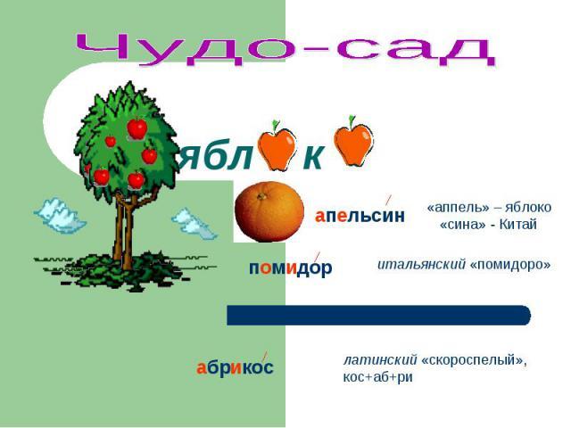 Чудо-сад «аппель» – яблоко «сина» - Китай итальянский «помидоро» латинский «скороспелый», кос+аб+ри