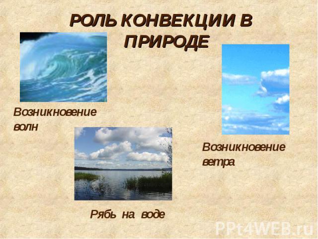 РОЛЬ КОНВЕКЦИИ В ПРИРОДЕ Возникновение волн Возникновение ветра Рябь на воде