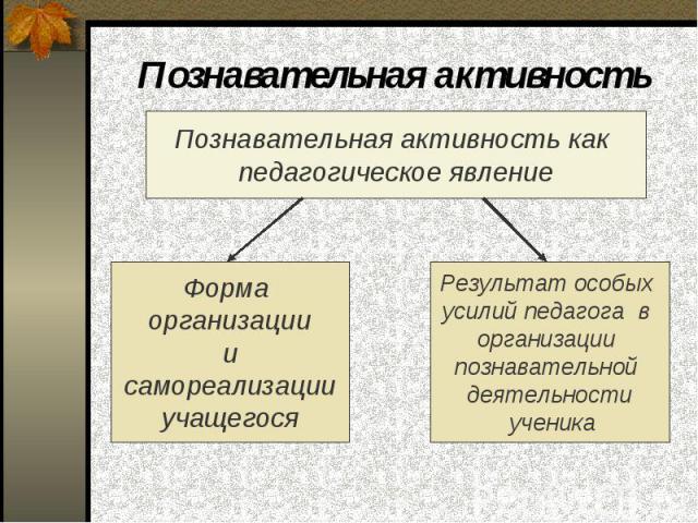 Познавательная активность Познавательная активность как педагогическое явление Форма организации и самореализации учащегося Результат особых усилий педагога в организации познавательной деятельности ученика