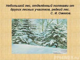 Небольшой лес, отделённый полянами от других лесных участков, редкий лес. С. И.