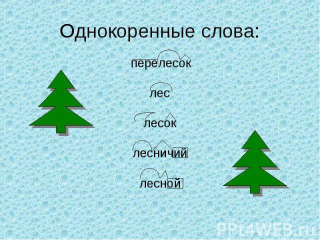Однокоренные слова: перелесок лес лесок лесничий лесной