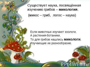 Существует наука, посвящённая изучению грибов – микология. (микос – гриб, логос