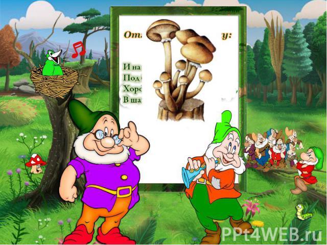 Отгадайте загадку: И на горке, и под горкой, Под берёзой и под ёлкой. Хороводами и в ряд В шапках молодцы стоят.