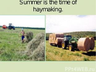Summer is the time of haymaking.