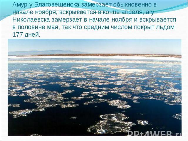 Амур у Благовещенска замерзает обыкновенно в начале ноября, вскрывается в конце апреля, а у Николаевска замерзает в начале ноября и вскрывается в половине мая, так что средним числом покрыт льдом 177 дней.