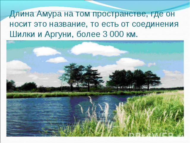 Длина Амура на том пространстве, где он носит это название, то есть от соединения Шилки и Аргуни, более 3 000 км.