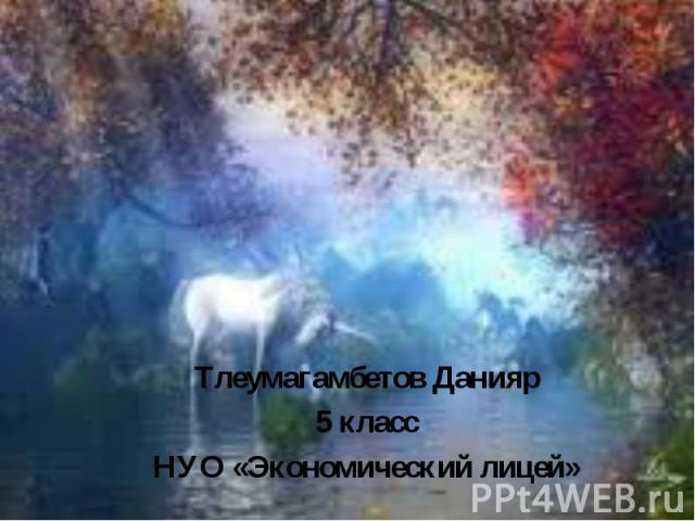 МИР ФЭНТАЗИ Тлеумагамбетов Данияр 5 класс НУО «Экономический лицей»