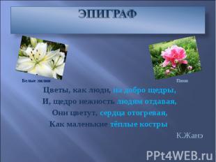 ЭПИГРАФ Цветы, как люди, на добро щедры, И, щедро нежность людям отдавая, Они цв
