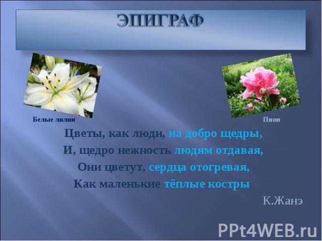 ЭПИГРАФ Цветы, как люди, на добро щедры, И, щедро нежность людям отдавая, Они цветут, сердца отогревая, Как маленькие тёплые костры. К.Жанэ