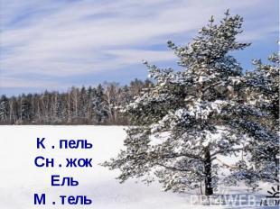 К . пель Сн . жок Ель М . тель
