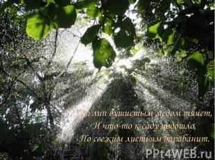 От лип душистым медом тянет, И что-то к саду подошло, По свежим листьям барабани