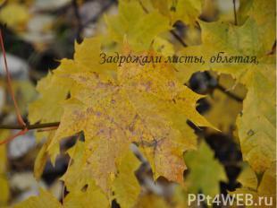 Задрожали листы, облетая,