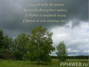 А уж от неба до земли, Качаясь, движется завеса, И будто в золотой пыли Стоит за