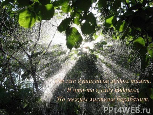 От лип душистым медом тянет, И что-то к саду подошло, По свежим листьям барабанит.