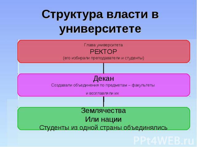 Структура власти в университете