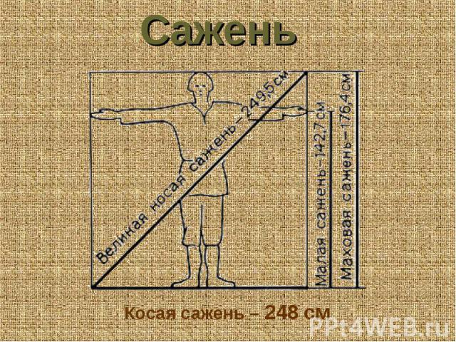 Сажень Косая сажень – 248 см