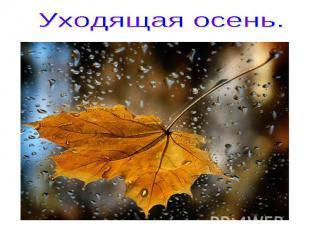 Уходящая осень.