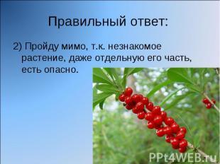 Правильный ответ: 2) Пройду мимо, т.к. незнакомое растение, даже отдельную его ч