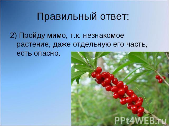 Правильный ответ: 2) Пройду мимо, т.к. незнакомое растение, даже отдельную его часть, есть опасно.