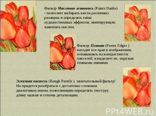 Фильтр Масляная живопись (Paints Daubs) - позволяет выбирать кисти различных раз