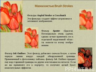 Мазки кистью Brush Strokes Фильтры Angled Strokes и Crosshatch Эти фильтры созда